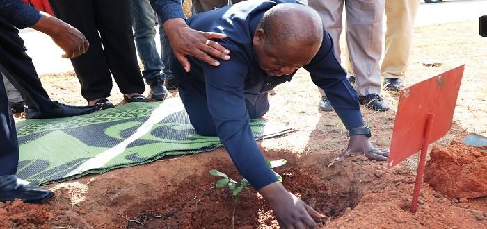 Spika wa Bunge, Job Ndugai akipanda mti wakati wa siku ya upandaji miti katika soko kuu la Job Ndugai Jijini Dodoma, ili kulifanya soko hilo liwe la kijani